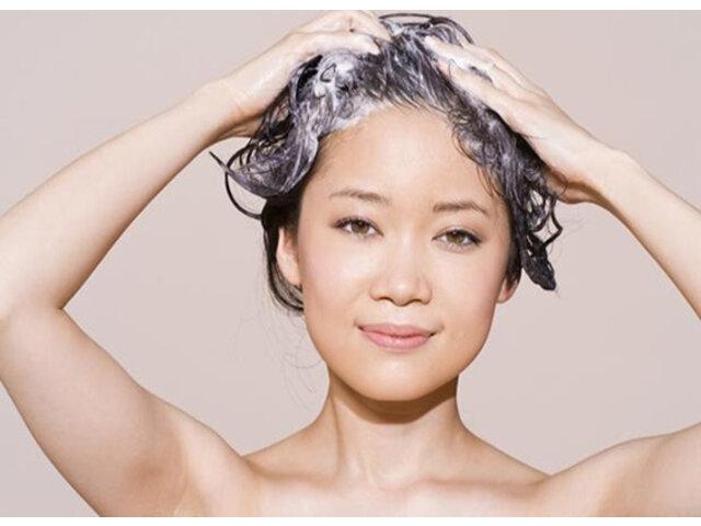 Top 5 dầu gội trị tóc dầu giúp mái tóc bồng bềnh đầy sức sống