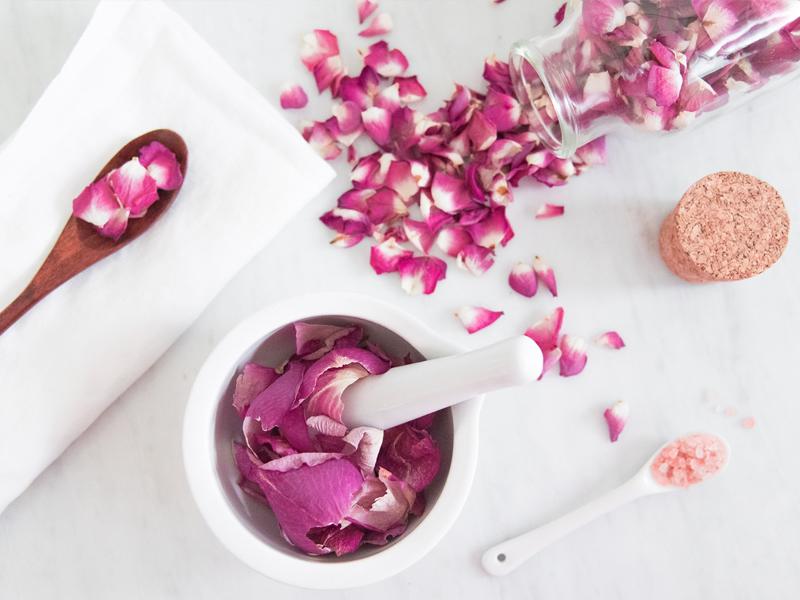 Cách trị thâm môi từ sữa tươi và cánh hoa hồng