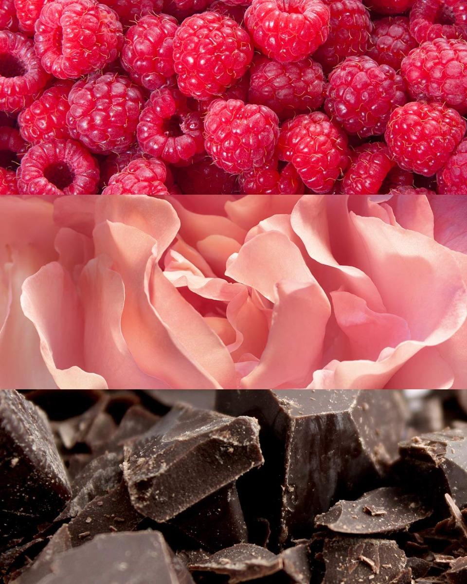 Nước Hoa Nữ Calvin Klein Euphoria Blush EDP có nhóm hương chủ đạo là các loại trái cây tươi mát