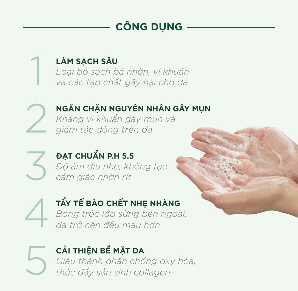 Sữa Rửa Mặt Caryophy Portulaca Cleansing Foam giúp ngăn ngừa mụn, giảm vết thâm.