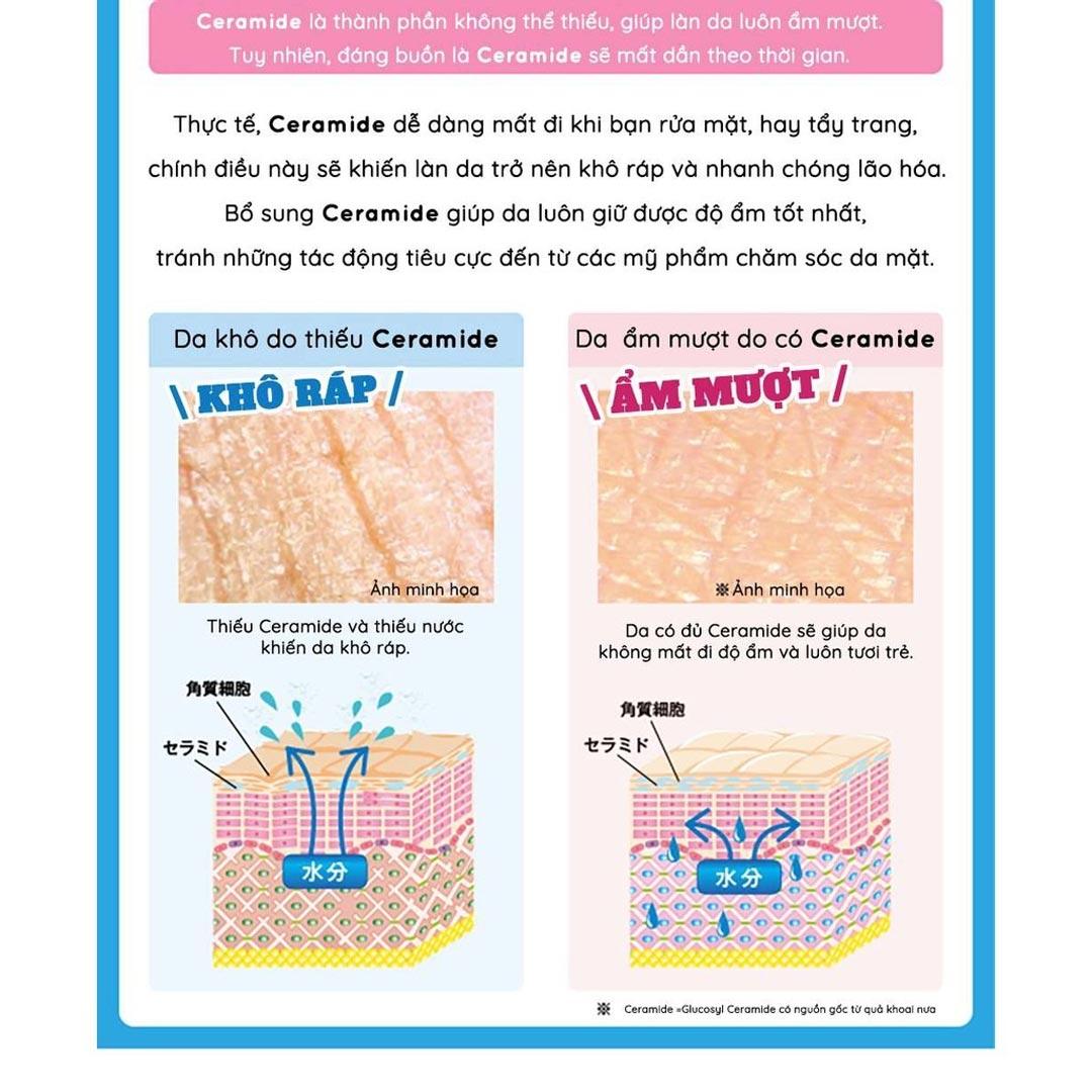 Vai trò của thành phần Ceramide có trong Thạch Bổ Sung Collagen AISHITOTO Ceramide Plus