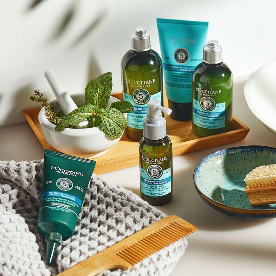 Dầu Gội Dành Cho Tóc Dầu L'OCCITANE Aromachologie Purifying Freshness Shampoo kiềm dầu hữu hiệu