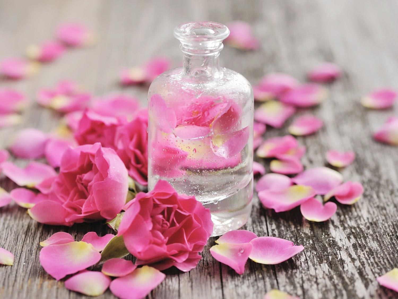Tinh Dầu Hoa Hồng DOLLANIA Dưỡng Mặt Và Toàn Thân Rose Fragrance chiết xuất hoa hồng