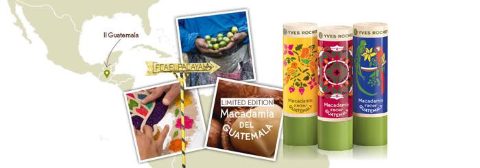 Son Dưỡng Môi Chiết Xuất Hạt Macadamia (Limited)